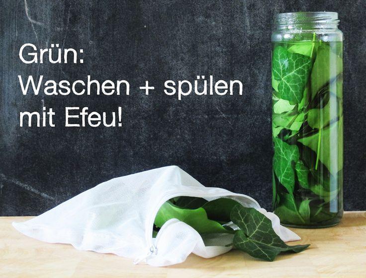 Grün: Geschirr spülen + Wäsche waschen mit Efeu!