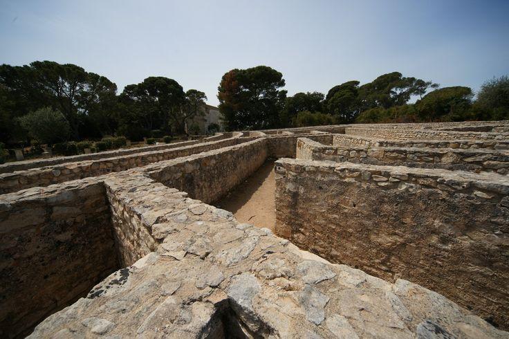 Ragusa - Labirinto Castello di Donnafugata