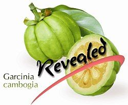 Dr. Oz's Garcinia Cambogia Extract Review + FAQs.  In this review, we are going to reveal the truth about Garcinia cambogia and answer the most common questions about this supplement - See more at: http://dr-oz.com/garcinia-cambogia-review