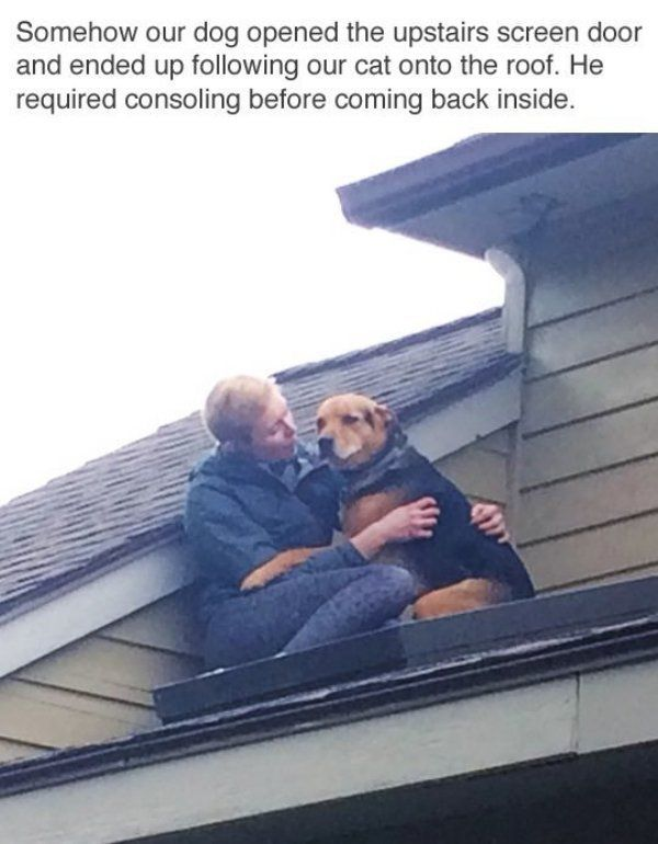 100 Today's Most Funny Memes (#150)