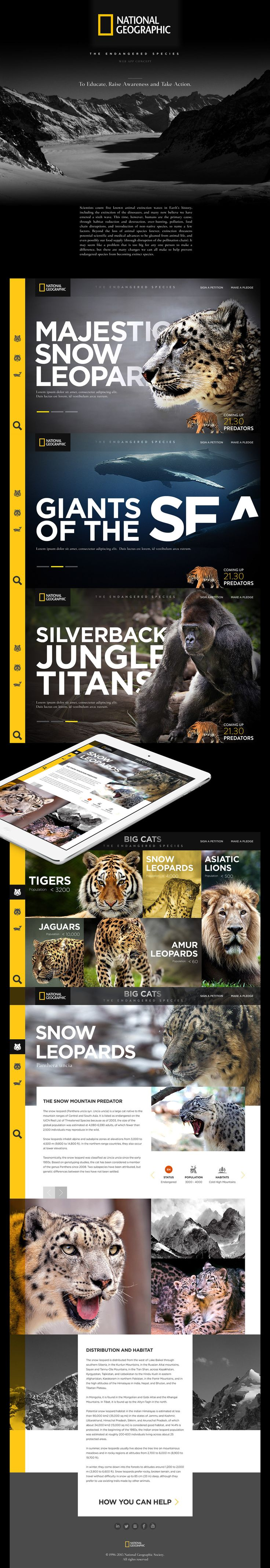 National Geographic webdesign concept. #UI #UserInterface #UX