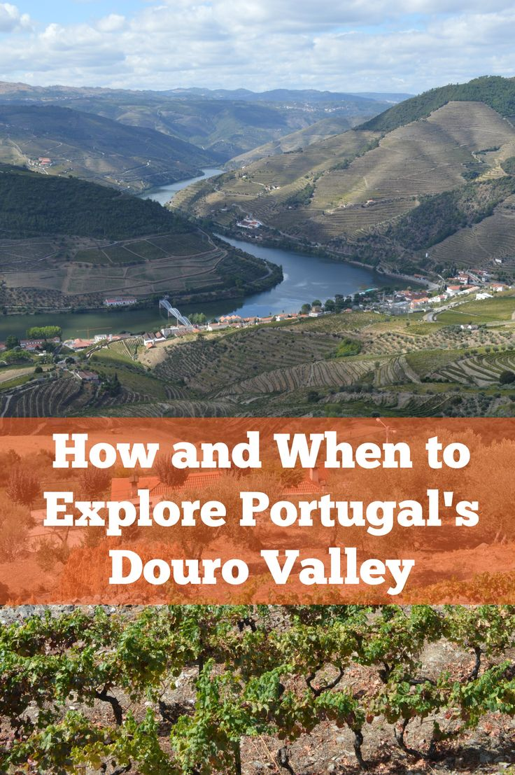 One of #Portugal's premier #wine regions, the #Douro Valley is set in dramatic…