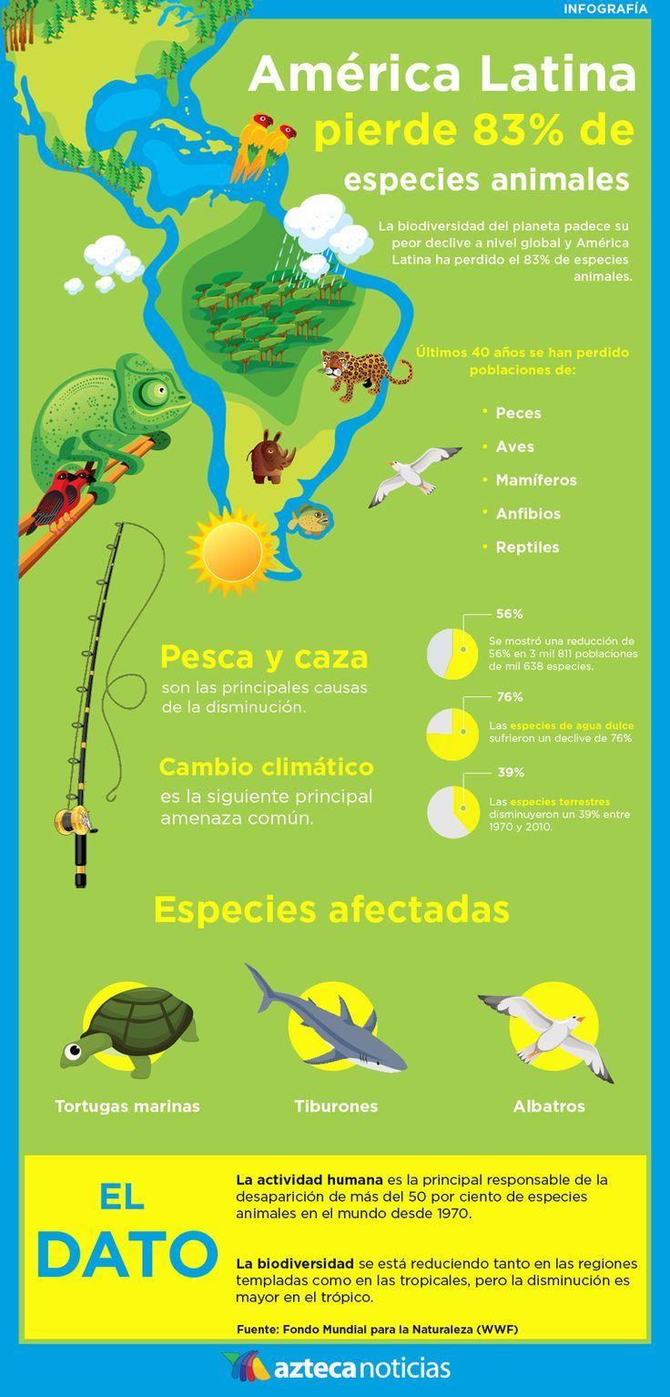 América Latina pierde 83% de especies animales