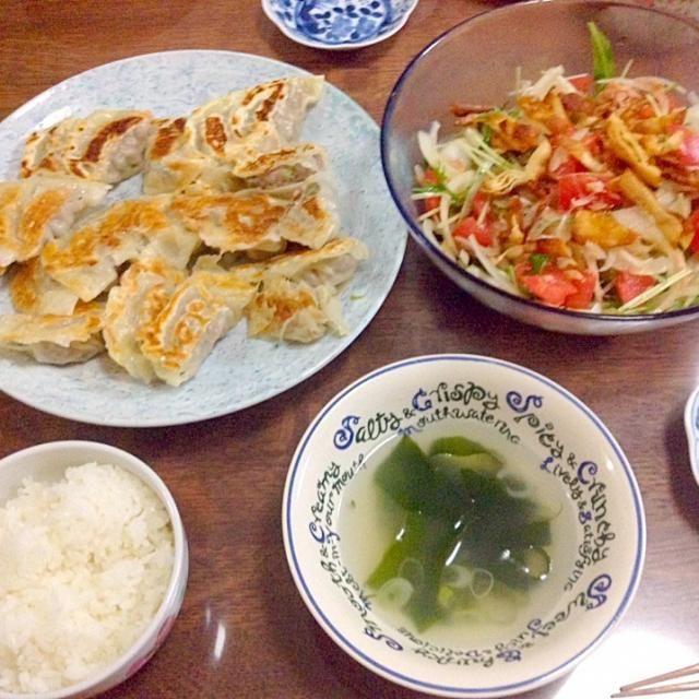 唐突に餃子が作りたくなったので。 サラダは水菜と玉ねぎとトマトとシーチキンを中華風に。 - 12件のもぐもぐ - 餃子と中華サラダ by akihiroichqvh