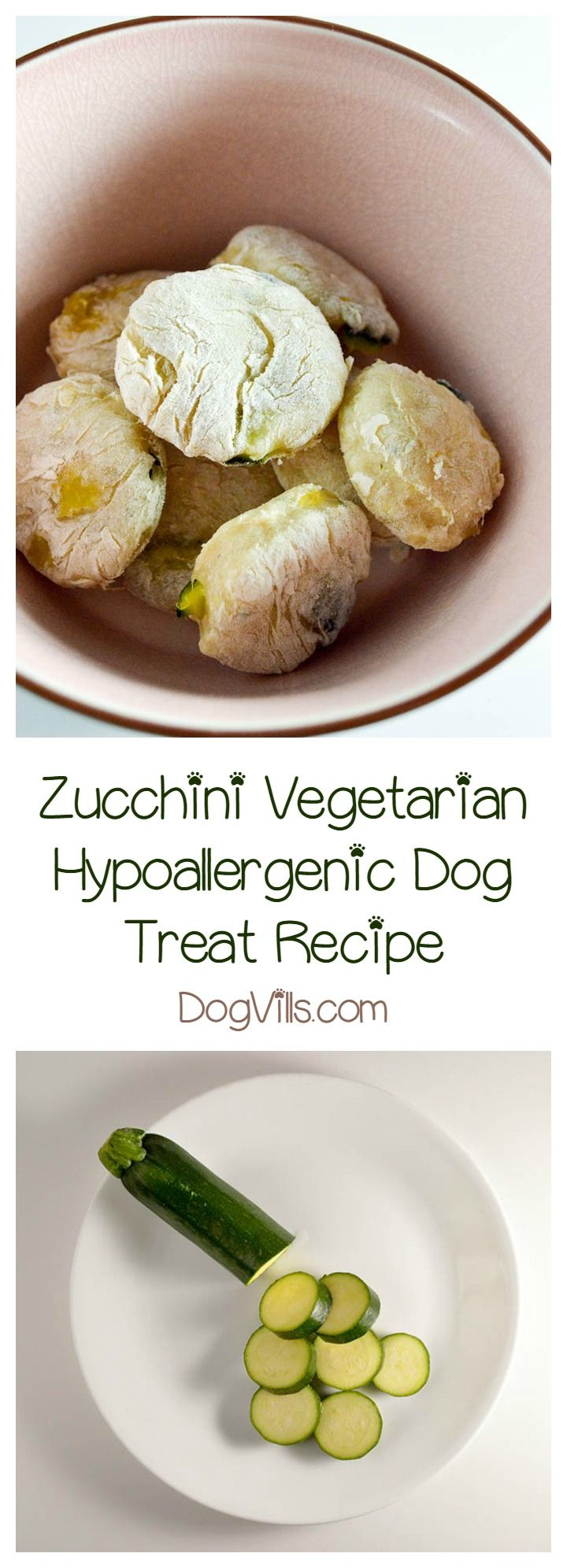 With Farmer's Market season upon us, now is a really great time to whip up a tasty vegetarian dog treat recipe! You can often find the zucchini on sale incredibly cheap. This particular treat is great for those looking for hypoallergenic dog treat recipes, since veggies play the starring role.