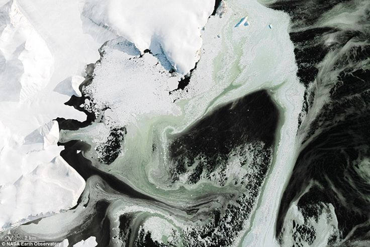 Pictures were taken from the the Landsat 8 satellite - the eighth satellite in the Landsat program - originally called the Landsat Data Continuity Mission (LDCM). The LDCM is a collaboration between NASA and the United States Geological Survey (USGS) for the acquisition of satellite imagery of the Earth