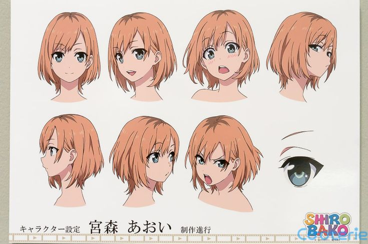 SHIROBAKO Character Model Sheets