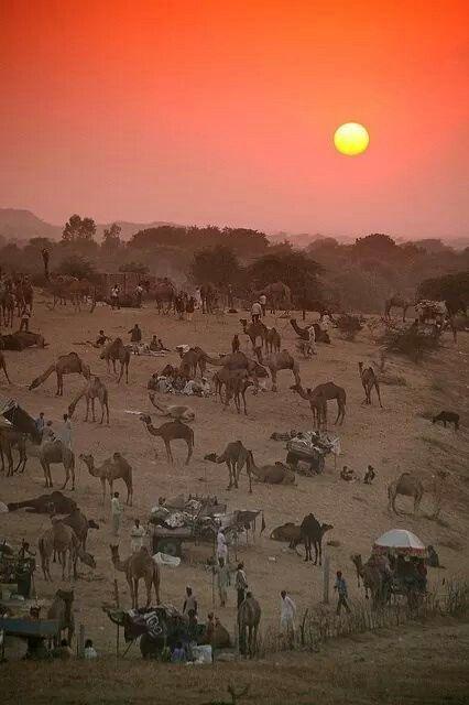 Sunset in Pushkar at Mela time