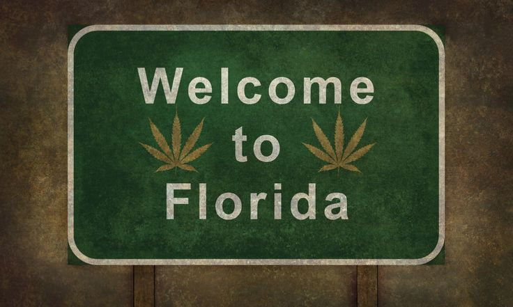 10 Best Smoke Shops In Florida