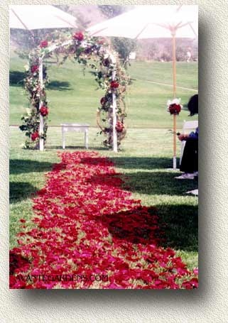 Rose petal path to a wedding arch
