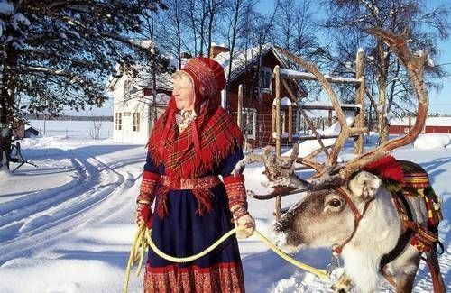 Reindeer Owner in Lapland