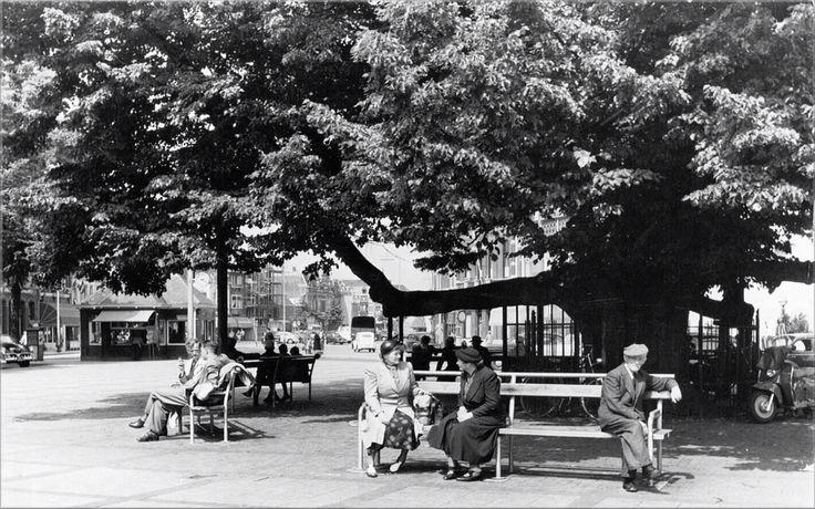 1954: De lindeboom op de Heuvel