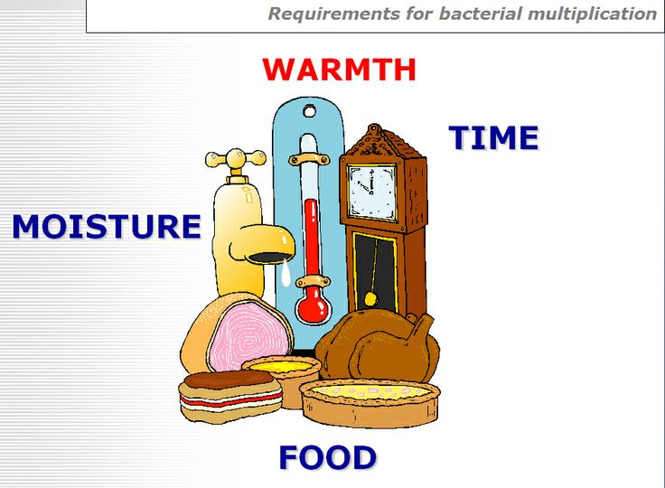 Bacterial Requirements