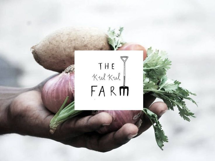 308 vind-ik-leuks, 6 reacties - Ryn Frank (@rynfrank) op Instagram: 'Preview of the logo I designed for Kul Kul farm. #illustration #illustrate #drawing #branding #logo…'