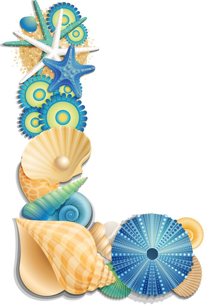 Seashells: