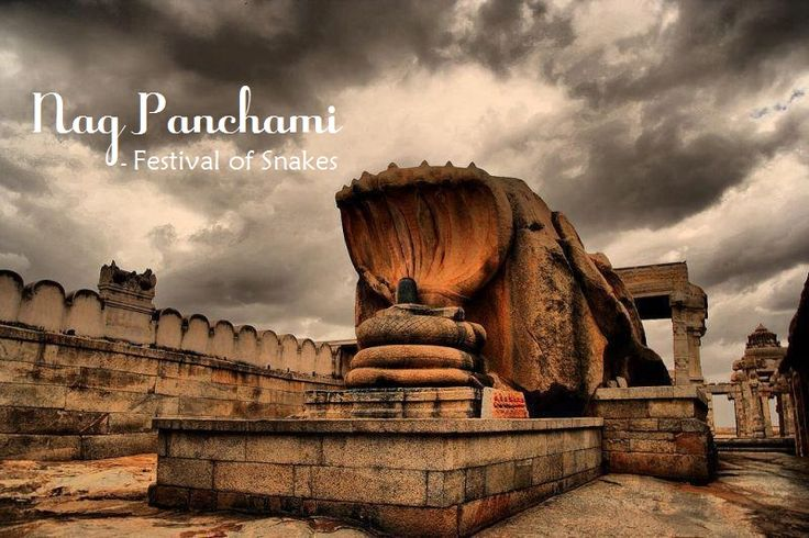 Nag Panchami is observed on the Shukla Paksha Panchami during the Hindu calendar month of Sawan.Nag Panchami is celebrated two days after Hariyali Teej. On this day women pray for the well-being of their brothers and families. They worship the Nag Devta (serpent God) and offer milk to them.