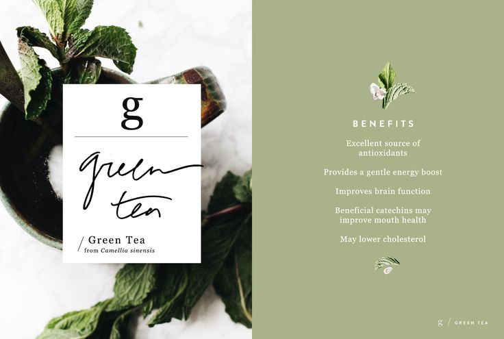 Wellness Encyclopedia: Green Tea & Coconut Green Tea Recipe – Free People Blog