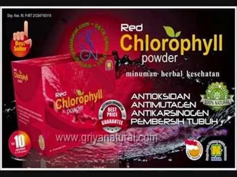 0818 0408 0101 (XL), peredaran darah, aliran darah, sistem sirkulasi, obat suplemen, vitamin antioksidan, suplemen kulit, suplemen tubuh, sirkulasi darah, suplemen terbaik, suplemen tinggi,