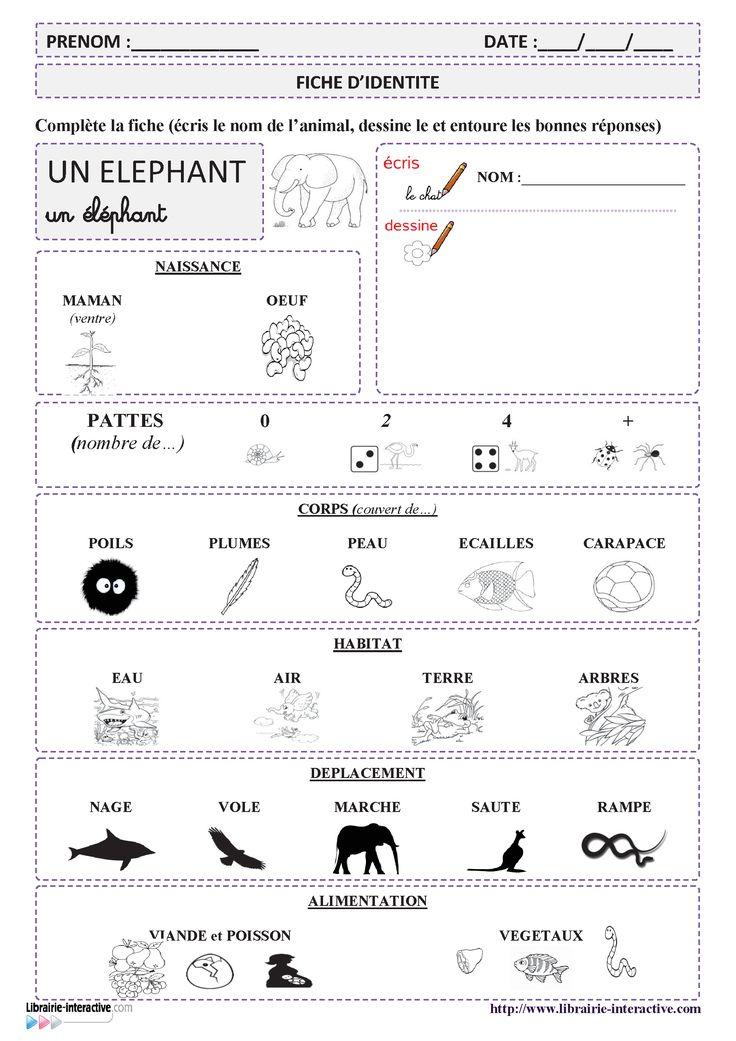 64 documentaires animaliers illustrés pour découvrir les animaux et leur mode de vie (MS - GS - CP)