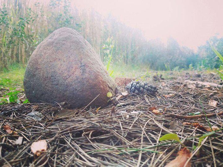 BIOpropósito antes de dormir...                          Recoger las piedras que dificultan mi camino para los cimientos de mi nueva vida BIO        , ellas me darán la fuerza, la sabiduría y el equilibrio para seguir avanzando en este nuevo BIOproyecto.  #Propósito #piedra #difucultad #camino #fuerza #sabiduría #equilibrio #tactusterram #irenemuset