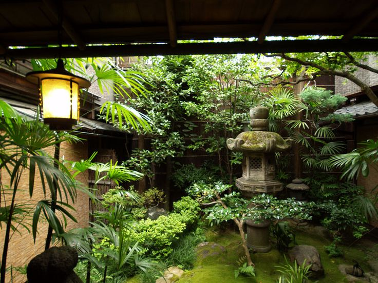 99 best courtyard garden images on pinterest for Tropical courtyard garden design