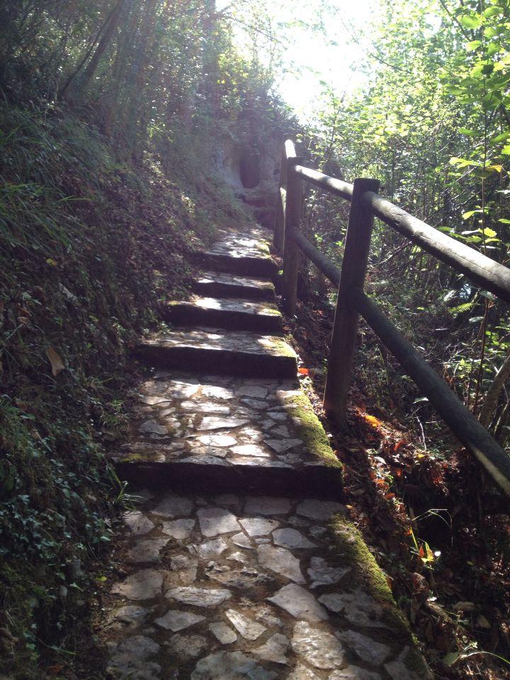 Camino a la Cueva del Buxu, #CangasdeOnis, #Asturias.