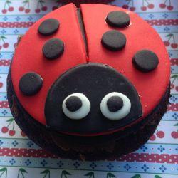 Lieveheersbeestje cupcakes