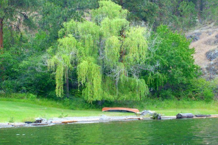 Lake Okanagan near Kelowna, BC