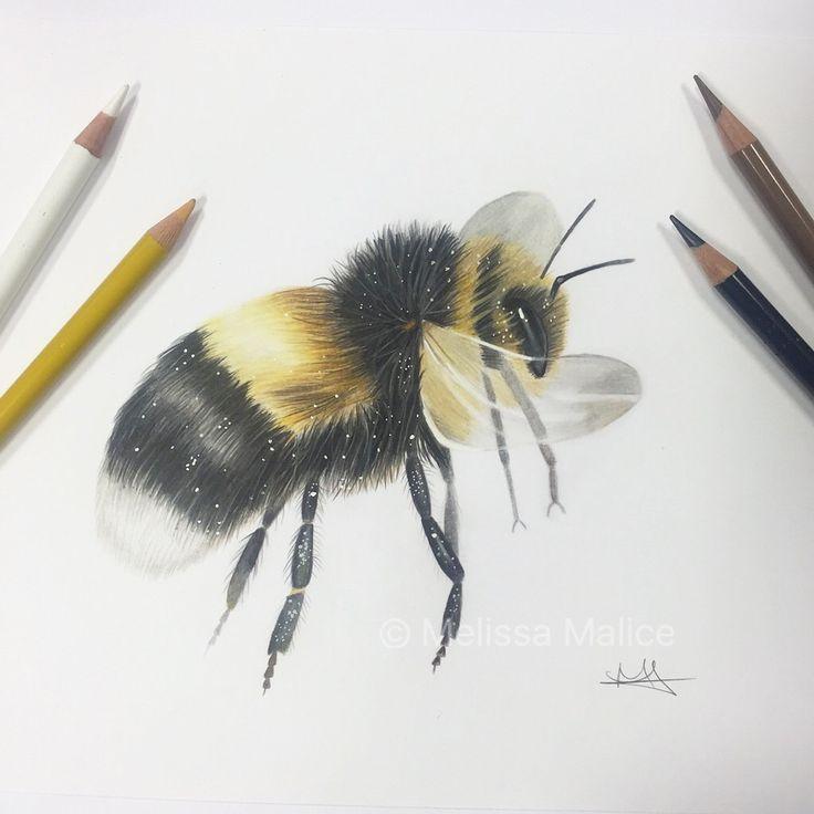 Bumble Bee drawing // Artist: Melissa Malice