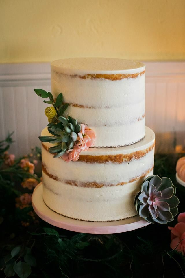 naked cake with live succulents  by  earthandsugar