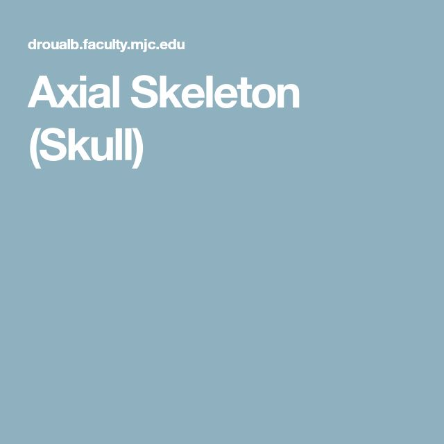 Axial Skeleton (Skull)