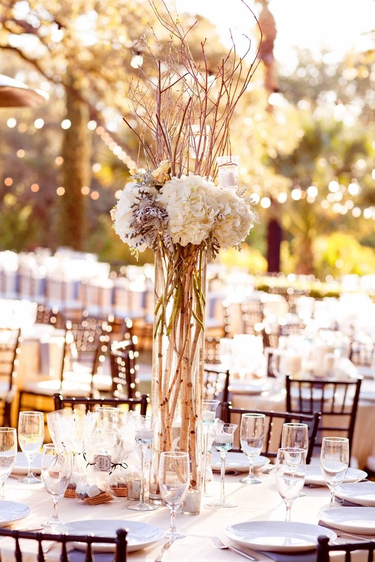 White Birch Branches Centerpieces | tall centerpieces will be cylinder vases with birch branches, white ...