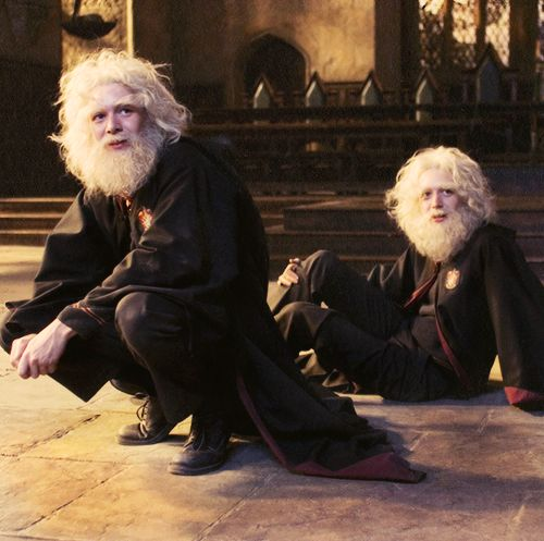 The twins after trying to sneak their names into the Goblet of Fire. Please follow my HP board #2 Regards ,CB