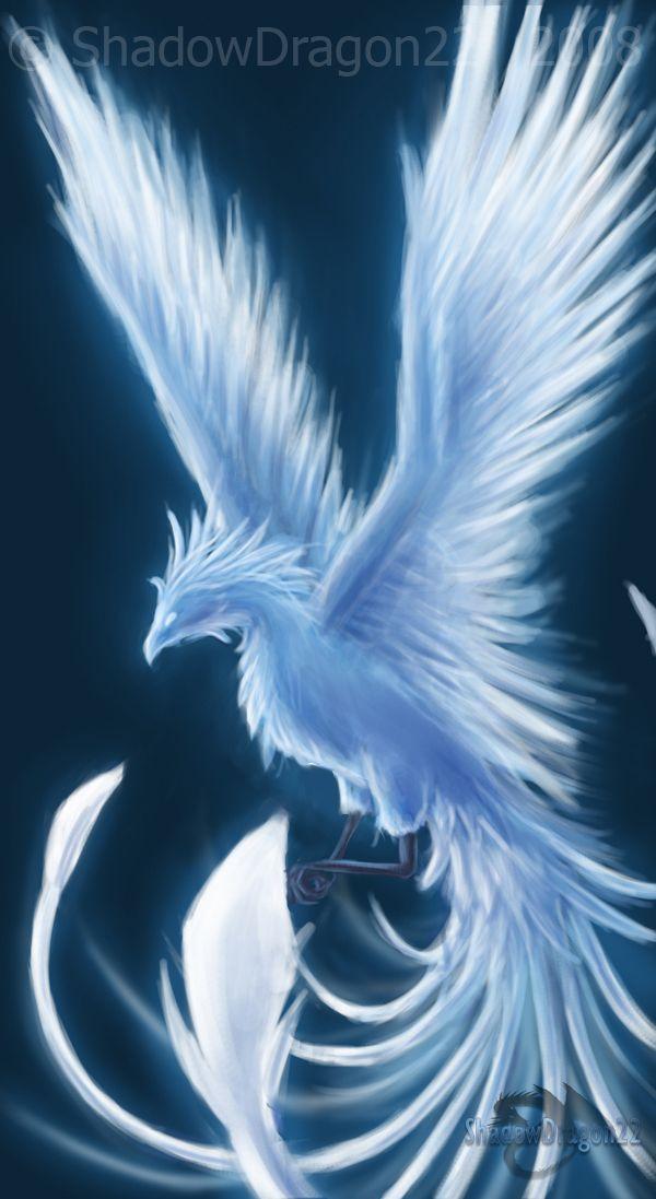 Winter Phoenix - Contest Entry by ShadowDragon22 on DeviantArt