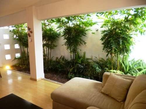 339 best images about decorando la vida on pinterest - Jardines de interior ...