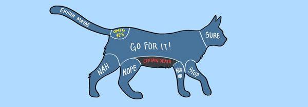 15張教你「如何摸動物」的完整圖解…是說為什麼會出現金鋼狼啦!?   台灣達人秀   最強自媒體聯播網
