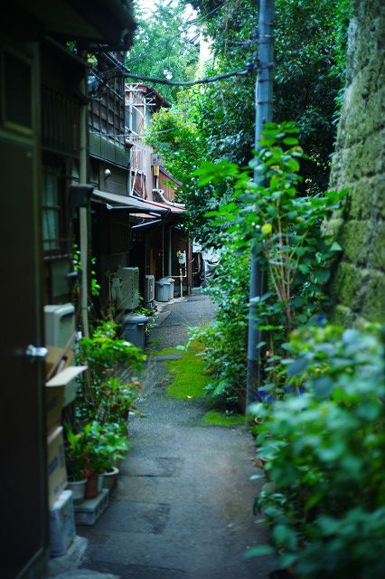 Hongo, Bunkyo city, Tokyo  本郷三丁目菊坂通り路地裏