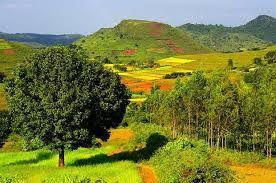 The beauty of Araku valley