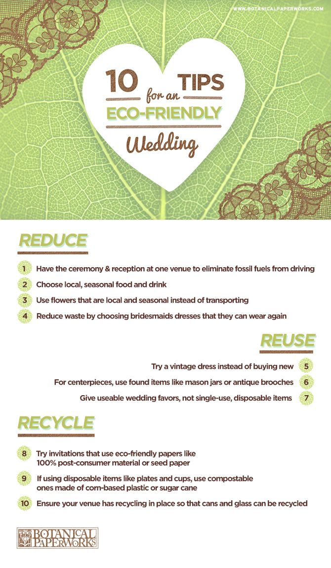 Tips for an eco-friendly wedding #weddingtips #weddingbudget brieonabudget.com/