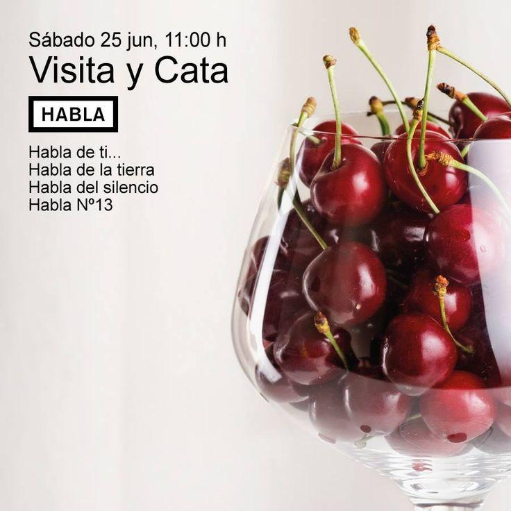 Visita y Cata en Bodegas Habla. Imprescindible reserva en 927659180. Plazas limitadas. 12 € por persona.