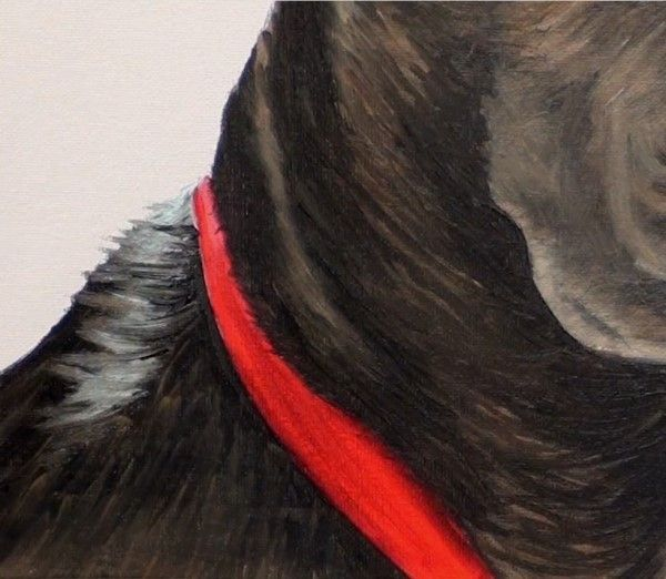 How To Paint Black Hair Animals Dog Pet Portrait Paintings Hair Painting Dog Paintings