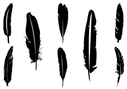 feather cliparts
