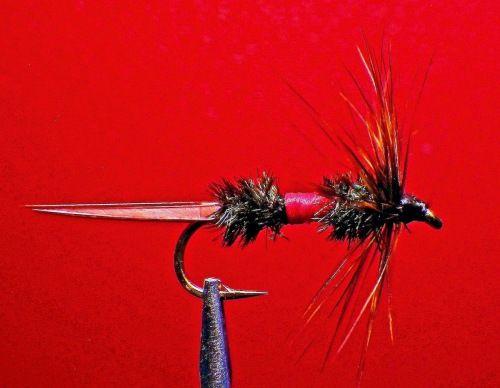 Stewart/'s Spider //Qty 3 Soft Hackle wet fly