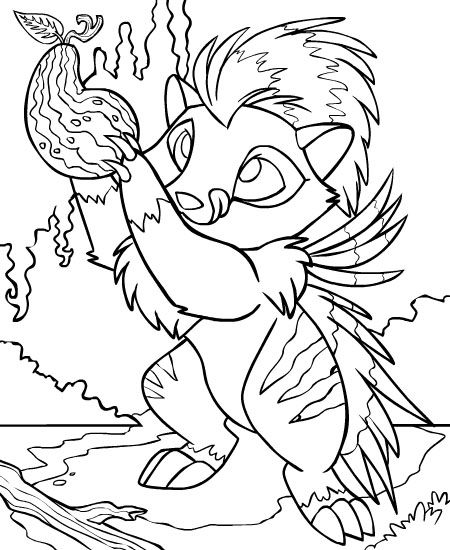 neopets coloring pages - 45 best neopets images on pinterest art drawings