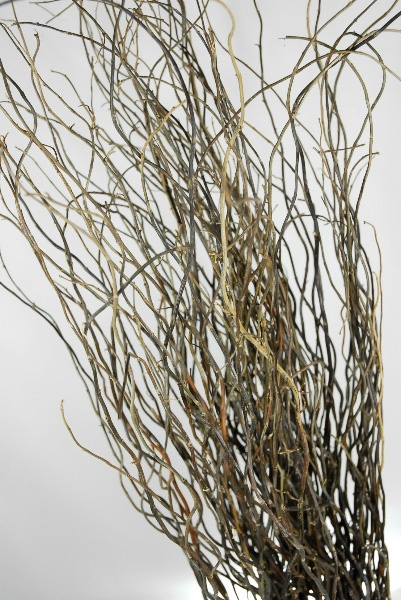 17 Best Images About Willows On Pinterest Florists Vases And Ranunculus