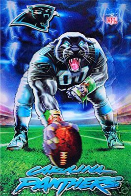 carolina panthers 1995 | 1995 Hall Of Fame Game Info-Panthers vs Jaguars