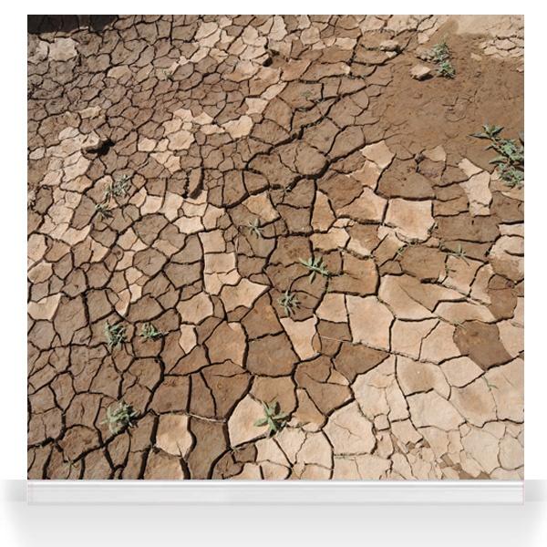 Not So Dry