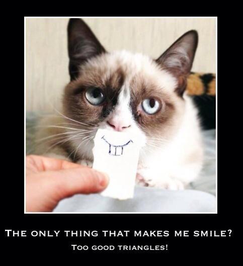#tgt #toogoodtriangles #grumpycat