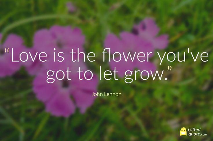 """""""Love is the flower you've got to let grow."""" John Lennon"""