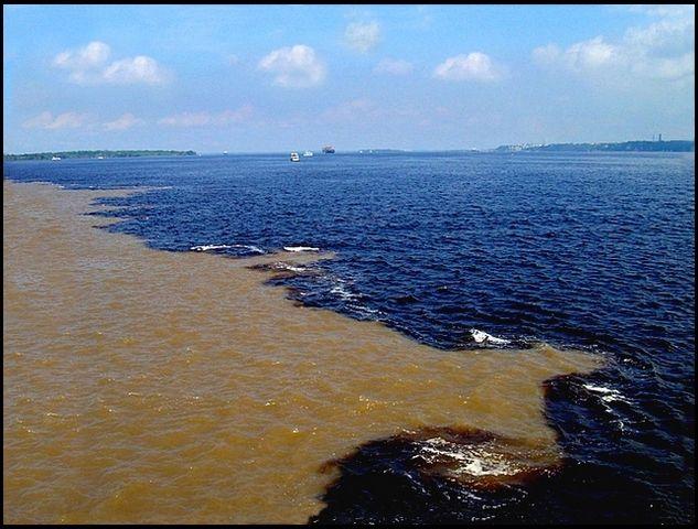 """Encontro das águas  O rio é uma das grandes atrações turísticas da cidade e um dos principais meios econômicos e de transporte para os seus habitantes. Nas proximidades de Manaus, o rio Negro encontra-se com o rio Solimões, formando o Encontro das águas, onde as águas barrentas do Solimões não se misturam com as águas do Rio Negro. Depois da união dos dois rios, passam a receber o nome de """"Rio Amazonas"""", em território brasileiro."""